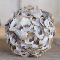 Oyster Shell Decorative Orb