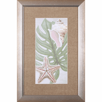 Palm Beach III Framed Print