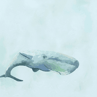 Pastel Whale Canvas Art