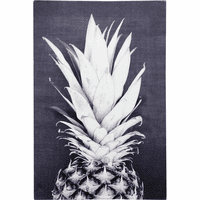 Pineapple Crown Canvas Wall Art