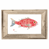 Red Snapper Framed Wall Art