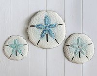Sand Dollar Beach Wall Art - Set of 3