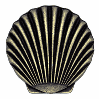 Scallop Shell Knob