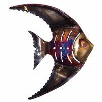 Scalloped Copper Dripped Angelfish