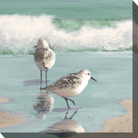 Sea Bird Couple Canvas Art