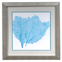 Sea Fan IV Framed Art