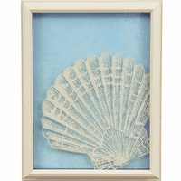 Sea Shell Shadow Box