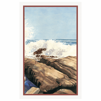Sea Spray II Framed Print