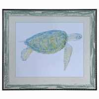 Sea Turtle I Framed Art