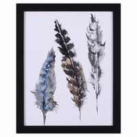 Seabird Feathers II Framed Art - 16 x 13