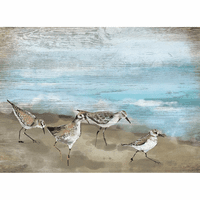 Seabirds in the Sand Wood Wall Art