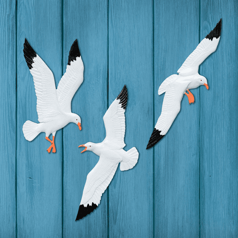 Seagull Family Wall D�cor