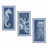 Seahorse & Jellyfish Framed Art - Set of 3
