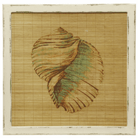 Shell on Bamboo Framed Wall Art