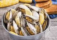 Shelling Out Information About Steamed Clams