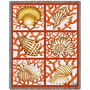 Shells and Coral Blanket