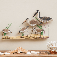 Shorebirds Wall Art
