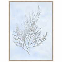 Silver Foil Algae II on Blue Framed Print