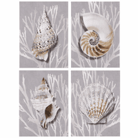 Silver Shells - Set of 4 Canvas Art
