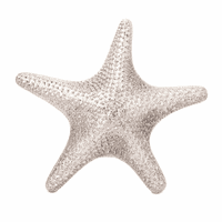 Silvery Sea Star Wall Décor