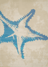 Starfish Beach Natural Rug - 2 x 3