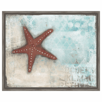 Starfish Framed Canvas