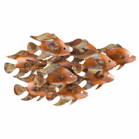 Sunlight Swimming Metal Fish Indoor/Outdoor Wall Art