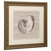 Taupe and White Nautilus Shell Framed Wall Art