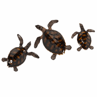 Tranquil Turtles Wall Décor - Set of 3