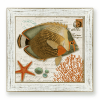 Vintage Angelfish Framed Art