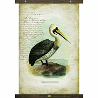 Waiting Pelican Wall Art