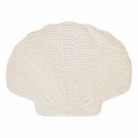 White Shell Placemats - Set of 12