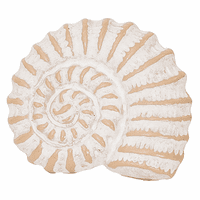 Whitewater Nautilus Napkin Rings - Set of 6