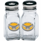 Kennesaw State Owls Yellow Pewter Accent Salt & Pepper Shakers
