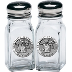 University of Kentucky Wildcats Pewter Accent Salt & Pepper Shakers