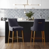 Beatrix Pleated Dark Grey Velvet/Gold Metal Counter Height Stool by TOV Furniture