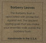 Barberry SM Rect Earring