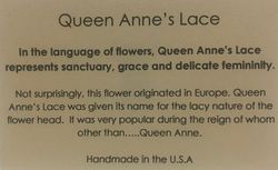 Blue Queen's Anne's Lace on Acai