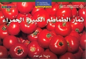 Level 13 - Big Red Tomatoes