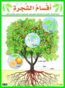 Poster of Parts of a Tree (Malayin)