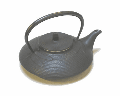 Black Dragonfly Cast Iron Teapot <br>by Iwachu 16 oz.