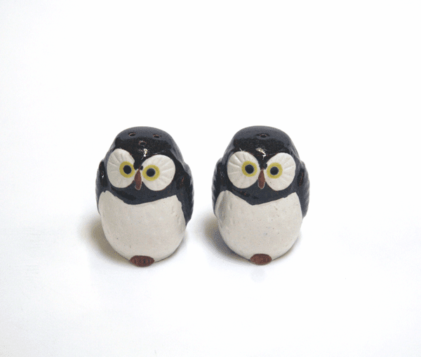 Chocolate Owl Salt and Pepper Shakers