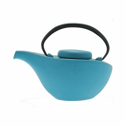 Iwachu Cast Iron Tea Pot Hikitune Mat Turquoise Finish