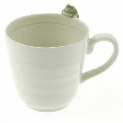 Little Frog wants Dragonfly Mug 8 oz.