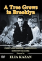 A Tree Grows in Brooklyn 1945 on DVD