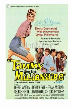 Tammy and the Millionaire 1967 on DVD
