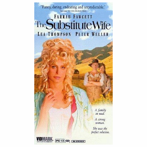 The Substitute Wife 1994 on DVD