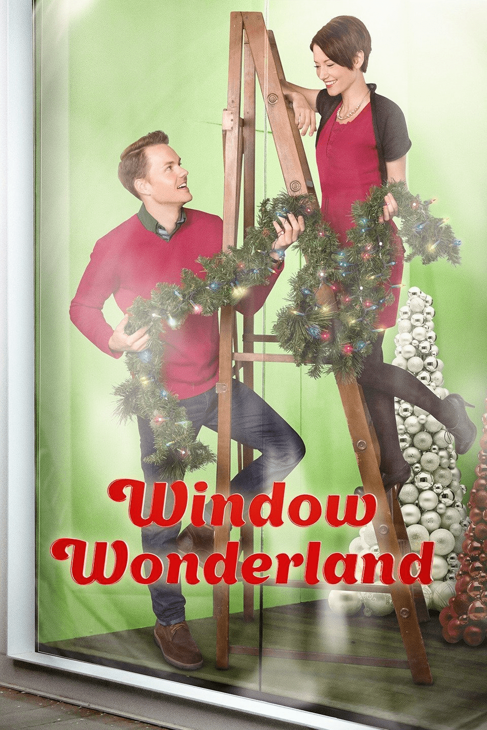 Window Wonderland 2013 DVD