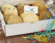 Cookies for your Summer Camper