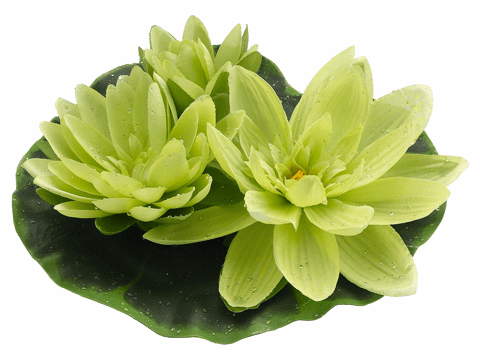 1/2 Dozen (6) - 9 inch Artificial Floating Lotus With Waterdrop 2 Flowers & 1 Bud in Green